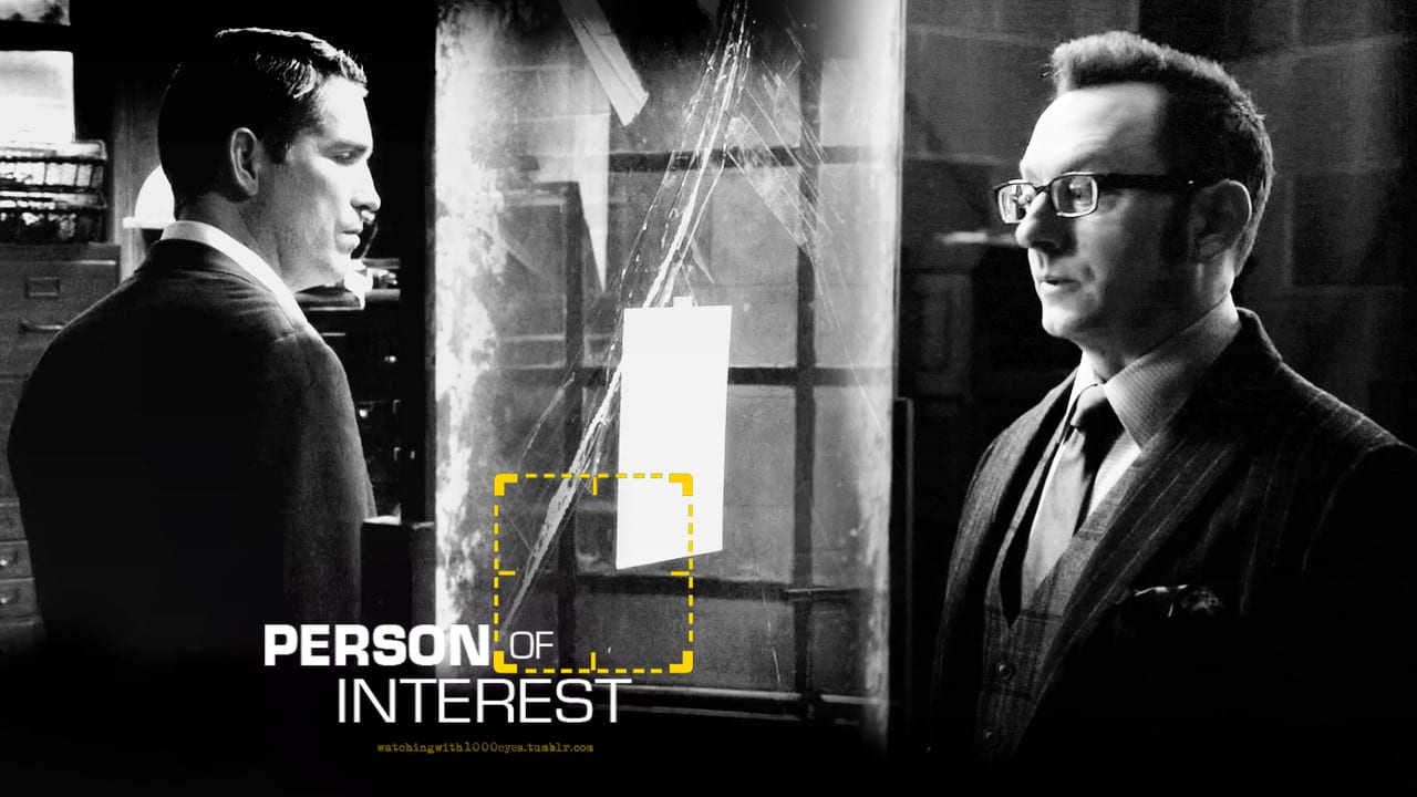 Person-of-Interest-person-of-interest