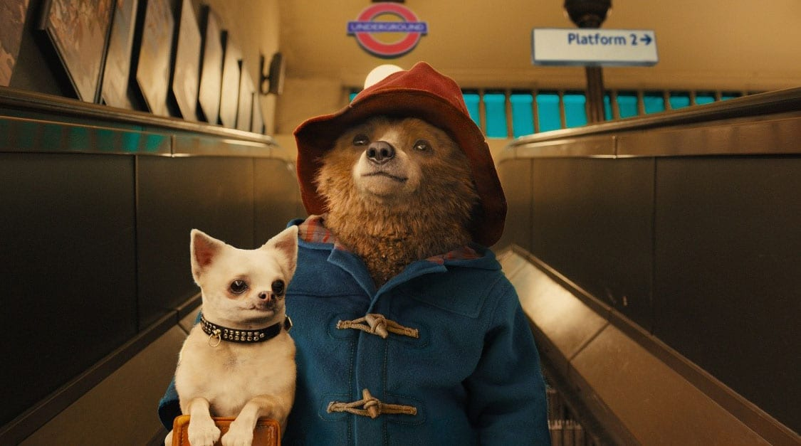 paddington-film-bear-dog