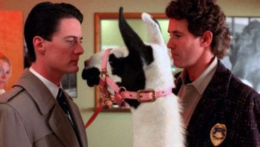 best-weirdest-twin-peaks-moments-llama