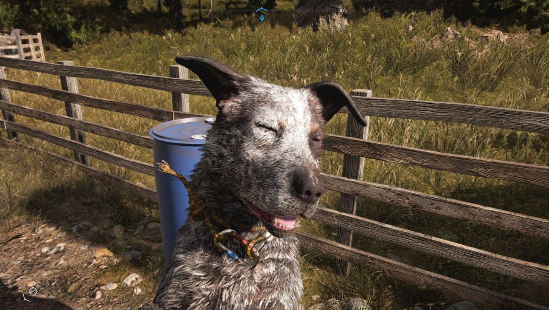 Охота в Far Cry 5 такая же, как и в GTA 5
